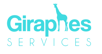 logistique ecommerce giraphes